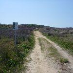 Cape Banks management trail (310238)