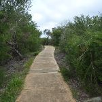 Footpath near La Perouse (311255)