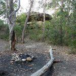 Singa-Jingawell Creek Campsite (315251)