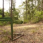 Intersection with German Point Rd in the Watagans (321572)