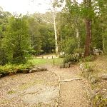 Boarding House Dam Picnic area in the Watagans (322493)