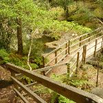 Timber bridge across creek at Boarding House Dam in the Watagans (322529)