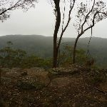 Gap Creek Viewpoint on a cloudy day off Monkey Face Road in the Watagans (322826)