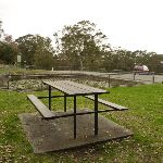 Picnic table and pond by the Mt Sugarloaf car park (324044)
