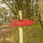 Red track track marker near the Mt Sugarloaf car park (324257)