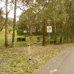 Mt Sugarloaf road and Mt Sugarloaft picnic area beyond (325283)