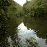 Berowra Creek (328940)