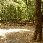Berowra Creek campsite (329276)