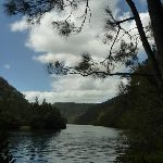 Berowra Creek (330431)