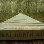 Boardwalk near Calna Creek (330806)