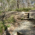 Track west of Berowra (332189)