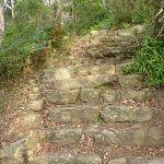 Bottom of the Hornsby stone steps (332750)