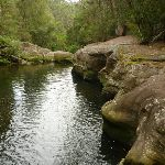 Water hole below 'the Spa' on Waitara Creek (333059)