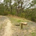 Int of GNW and Stringybark Ridge trail (334460)