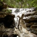 Palona Waterfall (33701)