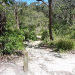 GNW near Flaggy Creek (338020)
