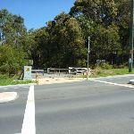 Crossing Burwood Rd (338308)