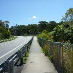 Great North walk beside Burwood Rd (338323)