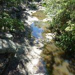 Flaggy Creek from Yuelarbah Walking Track (338482)