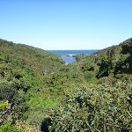 View from Leichhardts Lookout  (339163)