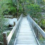 Crossing Little Flaggy Creek (339355)