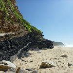 Coal seam on Burwood Beach (340321)