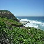 Looking over Susan Gilmore Beach (340876)