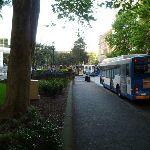 Walking along Loftus St (341944)