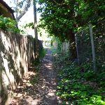 Alley near Garrick St (343144)