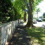 Walking along Passy Ave (343174)