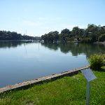 Lane cove River behind Hunters Hill High School (343537)