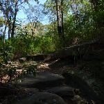 Rocky track near the end of Boronia Ave (343903)