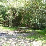 Brickmakers Creek Picnic area (344041)