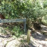 Int. Scenic Trail and Great North Walk (346090)