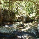 Small cascade on Washtub Creek (353717)
