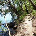 Walking along the track beside Berowra Creek (354167)