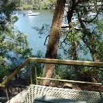 Berowra Waters View seat (354290)