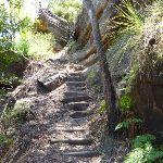 Steep steps east of Berowra Creek (354344)