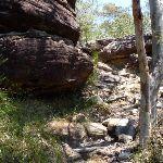 Rock track west of Deep Bay creek (354671)