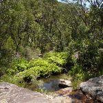 Crossing Deep Bay creek (354716)