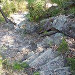 Steep track west of Joe Crafts Creek (355931)