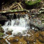 Wallis Creek (360011)