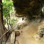 Cave on the Great North Walk north of Wallis Creek (360152)