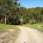 Walking through farm land in Congewai Valley (362147)