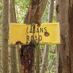 Langans Rd meets Cabans Rd (363158)
