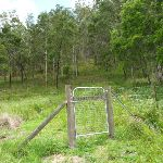 Please shut the gate north of Watagan Creek crossing (363377)