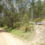 GNW track meets Watagan Creek Road (363542)