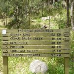 GNW signage at Watagan Creek Campsite (363566)