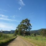 Walking along the Congewai Valley Rd (366218)