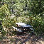 A small picnic table at Battery Causeway (36663)